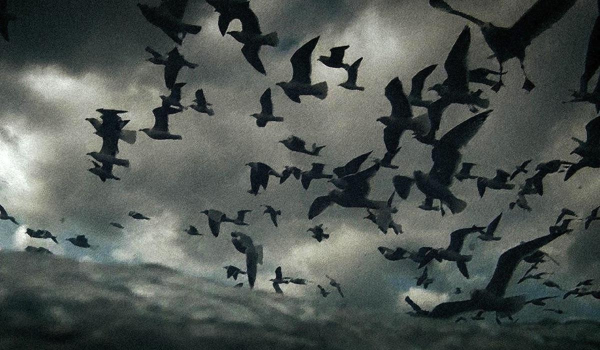 Film Still from Leviathan
