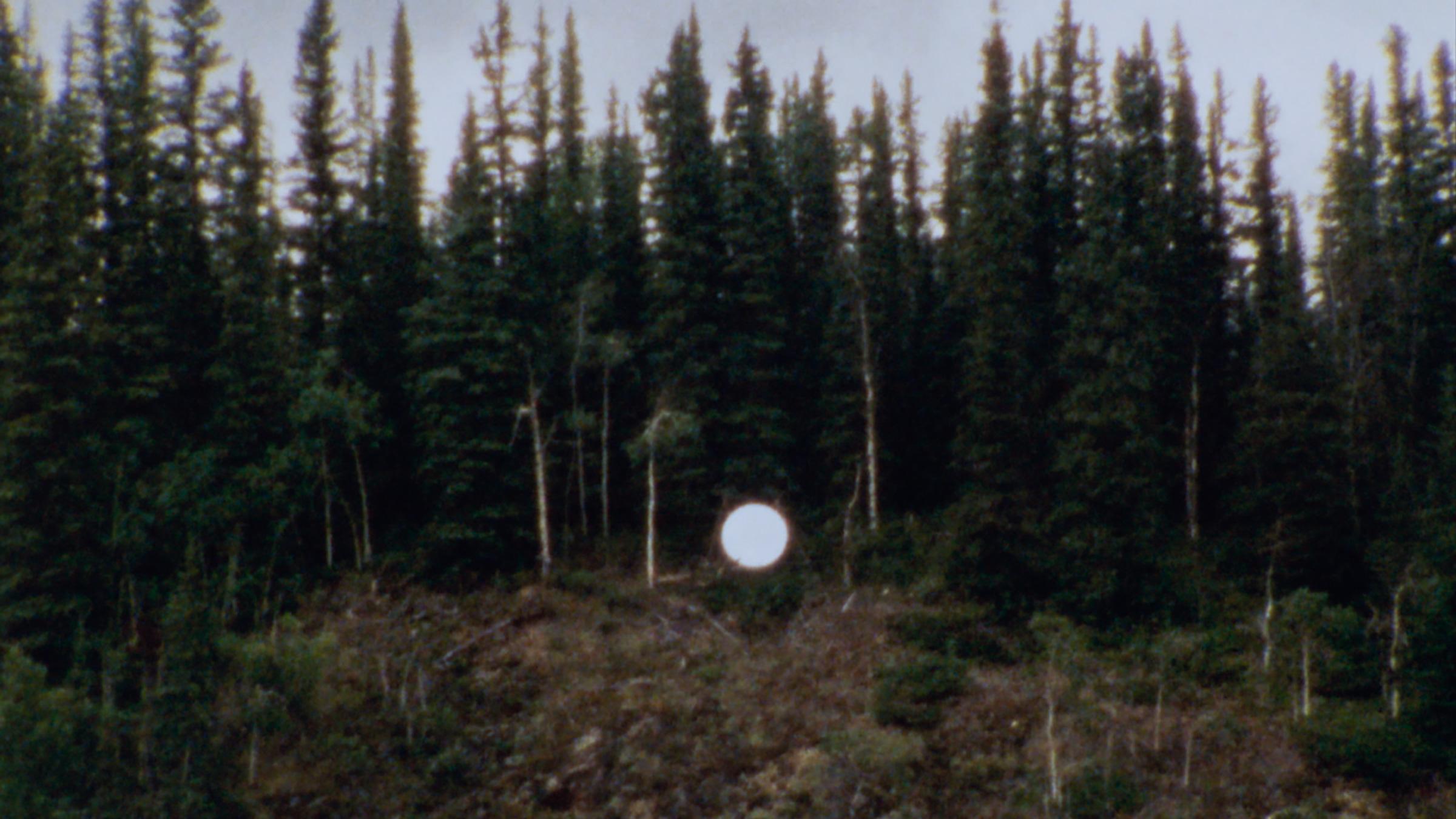 Film Still from Optimism